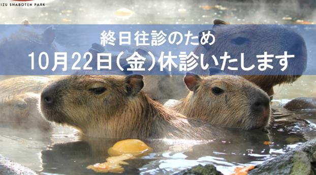 10月22日(金)休診のお知らせ